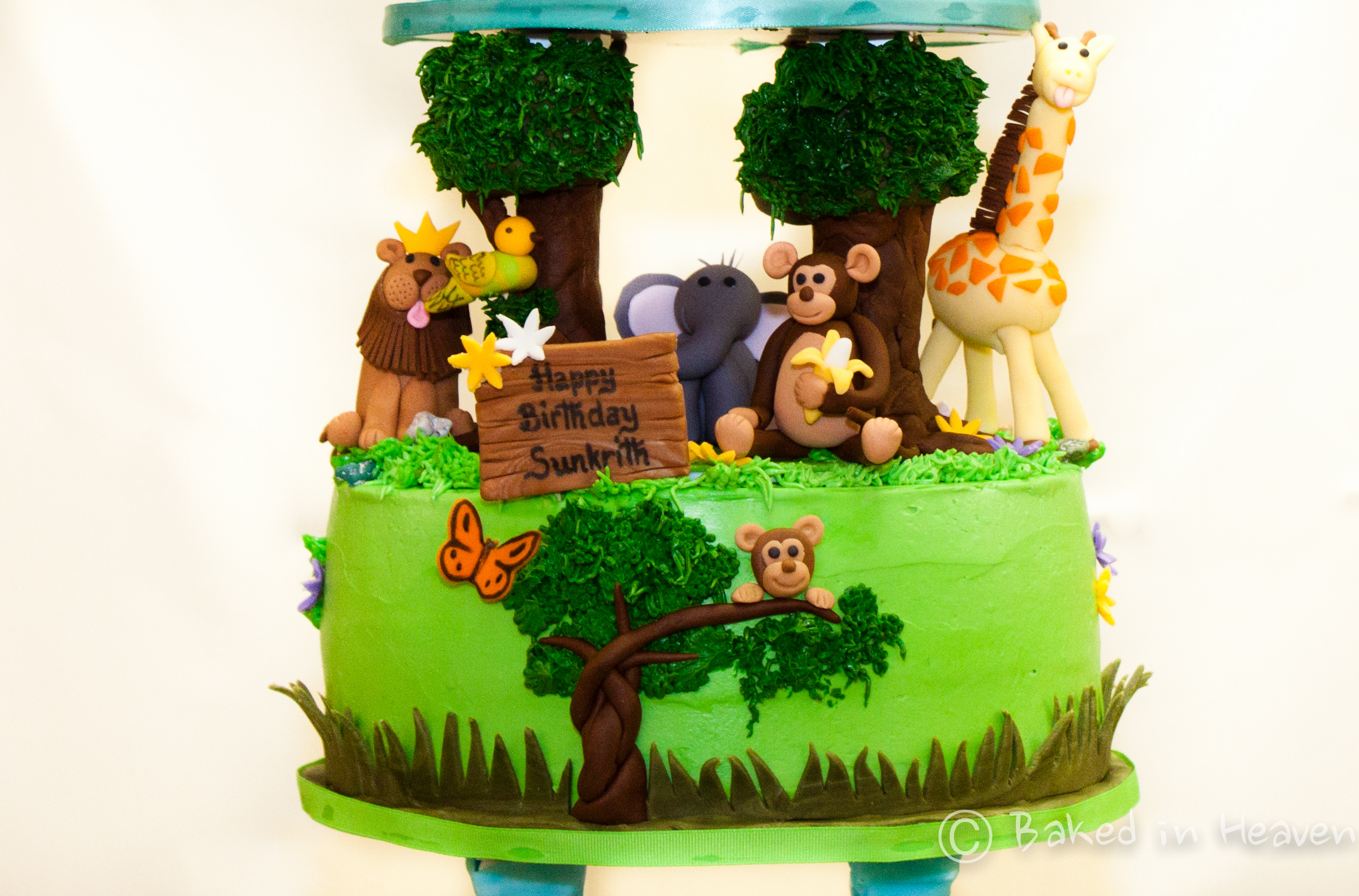 img_8472 jungle themed cake on birthday cake name add