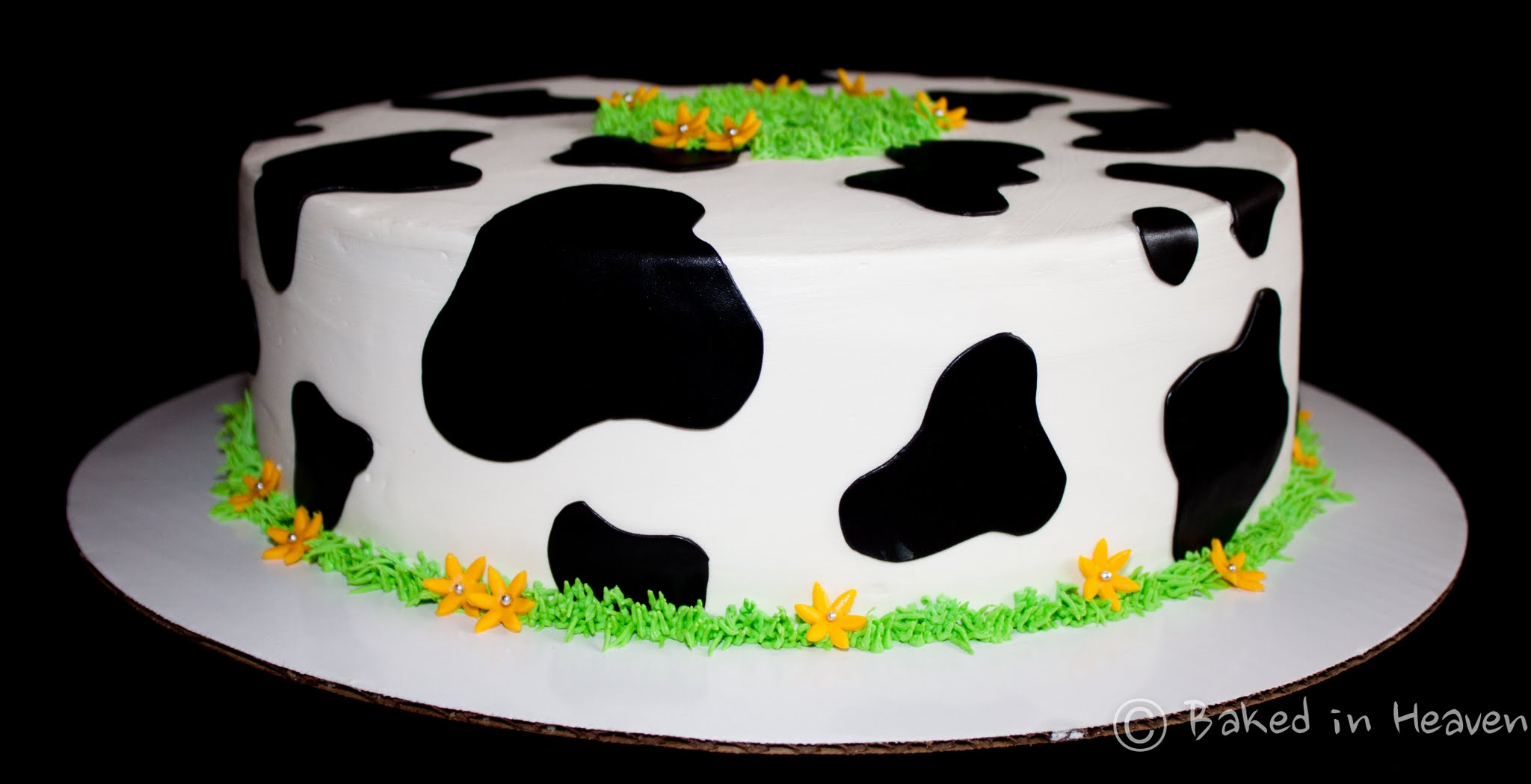 Cow Print Cake Baked In Heaven